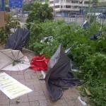 Typhoon times